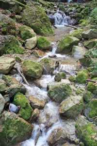 7131869-small-stream-running-over-moss-covered-stones-stock-photo